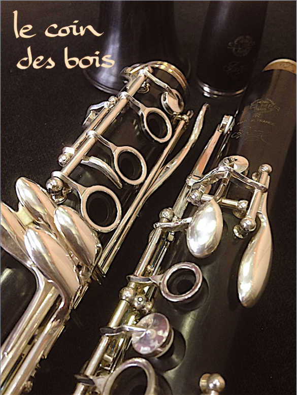 Clarinette Selmer Recital la D1340-2